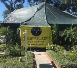 Orlando Home Fumigation Orlando Termite G A G Pest Control